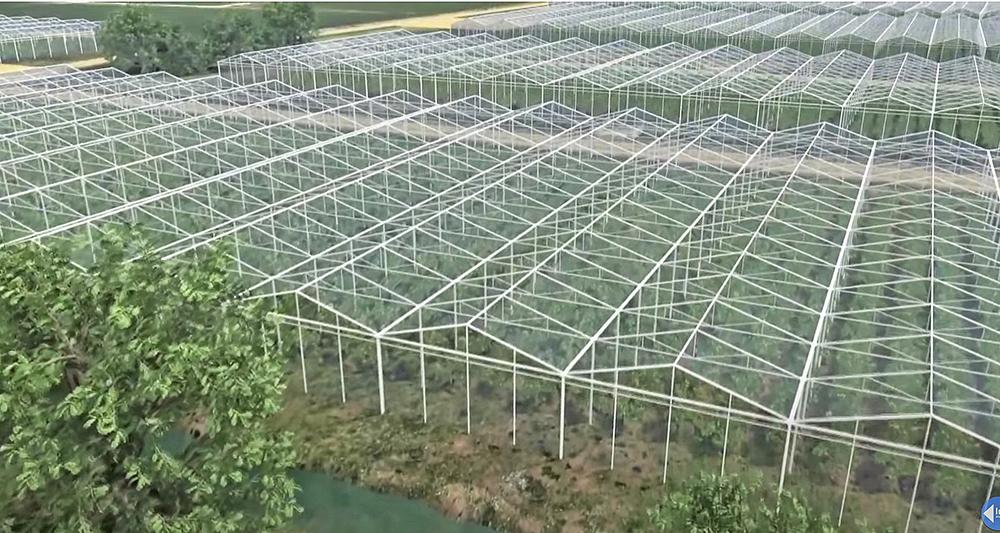 Ecotendencias cultivos alta tecnología